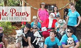 Promotional photo of the 2016 Jingle Paws Walk for Pets event.