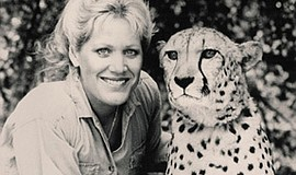 Promotional photo of international animal ambassador Joan Embery and a cheeta...