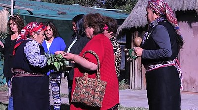 """Film still from """"Traditional Knowledge: Mapuche Medicine ..."""
