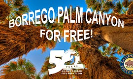 Promotional flier for the Borrego Palm Canyon free hiking event.