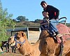 Oasis Camel Dairy visitors enjoying a camel ride. Courtesy of Oasis Camel Dairy.