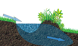 Promotional graphic for Planting Water.