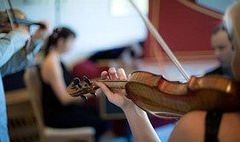 "Promotional photo of a violinist for the ""Shakespeare In Concert"" event."