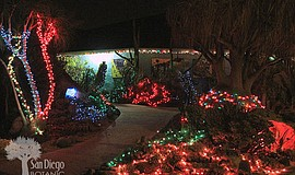 Promotional photo for the Garden Of Lights at San Diego Botanic Garden, Dec. ...