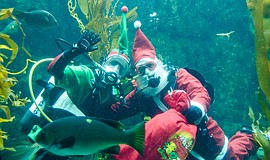 Photo of Scuba Santa at the Birch Aquarium.