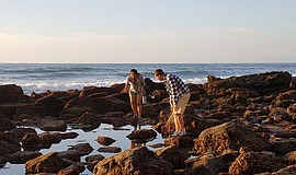 Guests at a tidepooling adventure with Birch Aquarium.