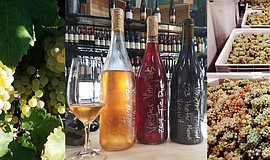 Promotional photo of wine and food for Mess Hall's local Winemakers Series.