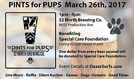 Promotional photo for Pints for Pups