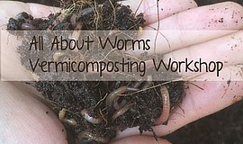 Promotional graphic for the All About Worms Vermicomposting workshop. Courtes...