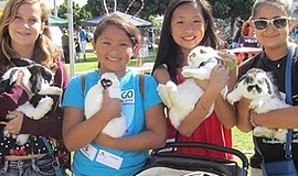 Promotional photo of people and their bunnies at Bunnyfest. Courtesy of San D...
