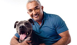 Promo graphic for Cesar Millan