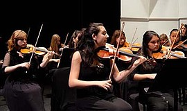 Promotional photo for the International Youth Symphony Concert. Courtesy of S...