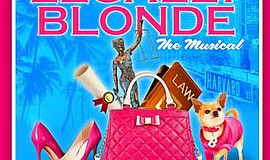 "Promotional graphio for ""Legally Blonde the Musical."" Courtesy of Moonlight Y..."