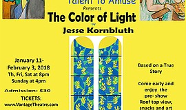 "A promotional flyer for ""The Color of Light,"" courtesy of Vantage..."