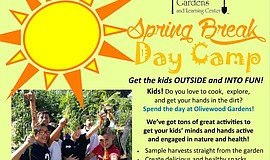 Promotional graphic for the Spring Break Day Camp.