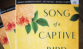 Promo graphic for Jasmin Darznik - 'Song Of A Captive B...
