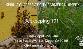 Promotional photo for the City Farmers Nursery spring class Beekeeping 101.