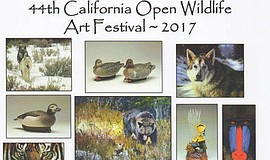 Promotional photo courtesy of the Pacific Southwest Wildlife Arts Inc.
