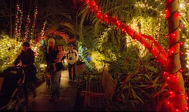 Promotional photo for Garden Of Lights: December 2 – 23 & 26 – 30, 2017 from ...