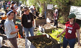 Participants learning at a Master Composter course.