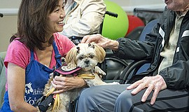 Photo of a canine ambassador bringing joy to others through Pet-Assisted Ther...