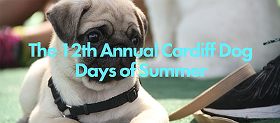 Promotional graphic for Cardiff Dog Days of Summer. Courtesy of Cardiff Dog Days of Summer.