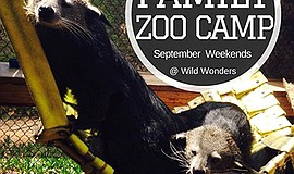 Promotional graphic for the family zoo camp. Courtesy of Wild Wonders.