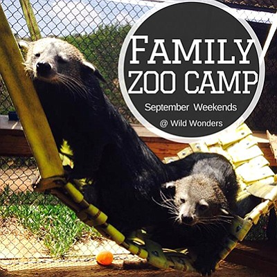 Promotional graphic for the family zoo camp. Courtesy of ...