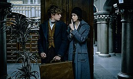 "A photo still from the film ""Fantastic Beasts and Where to Find Them."""