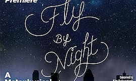 "A promotional poster for ""Fly By Night"" at the Coronado Playhouse."