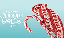 Promotional graphic for Jungle Bells. Courtesy of the San Diego Zoo.