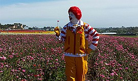 Promotional photo of Ronald McDonald at The Flower Fields at Carlsbad Ranch f...