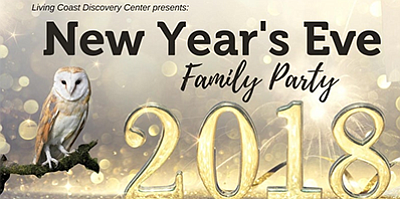 Promotional graphic for the New Year's Eve Family Party. ...