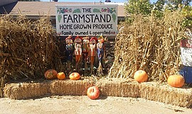 Promotional photo for the Pumpkin Patch @ Farm Stand West