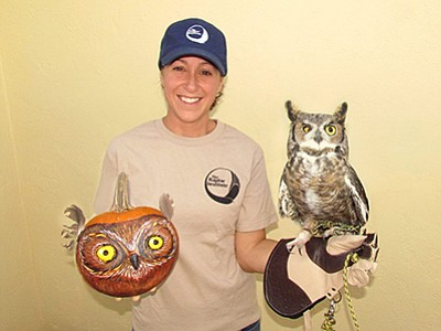 Promotional photo of great horned owl. Courtesy of The Raptor Institute.