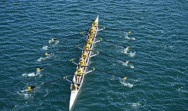 Promotional photo courtesy of ZLAC Rowing Club.