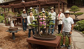 Promotional photo of San Diego Bonsai Club members. Courtesy of the San Diego...