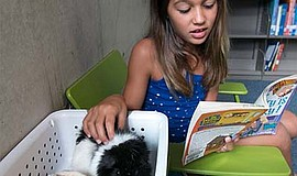 Promotional photo of girl with a guinea pig. Courtesy of the San Diego Humane...