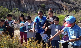 Promotional photo courtesy of the San Diego Audubon Society.
