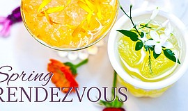 Promotional photo for the Spring Rendezvous Pop-up Cocktail Party At The US G...