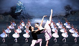 "Promotional photo for the performance of ""Swan Lake."" Courtesy of the Russian..."