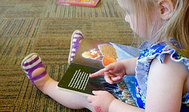 Photo of a toddler reading.