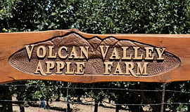 Promotional photo courtesy of Volcan Valley Apple Farm.