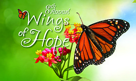 Promotional graphic for Winds of Hope.