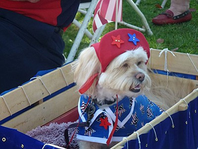 Photo from the Annual Larry Himmel Patriotic Pet Contest....