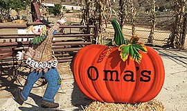 Promo graphic for Oma's Pumpkin Patch