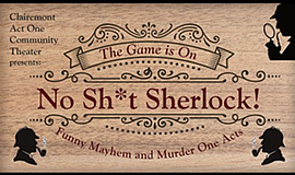 Promo graphic for 'No Sh*t Sherlock': A Collection Of O...