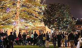 Photo from a previous tree lighting and holiday festival....