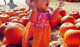 Photo from last year's pumpkin patch. Courtesy of Bates N...