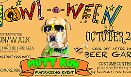 Promotional graphic for the Howl-O-Ween Mutt Run. Courtes...